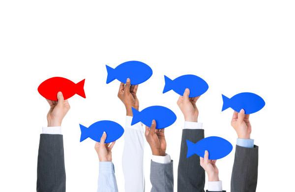 Diferencias da Concorrencia - Agência de Marketing Digital em BH: Agência DOM